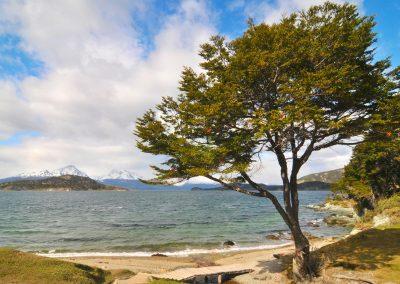Fotografía De Paisaje Isla Grande de Tierra del Fuego Ushuaia