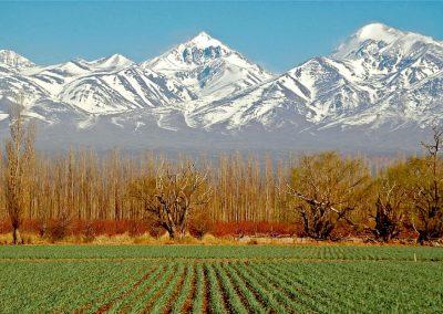 Mendoza Argentina imagenes