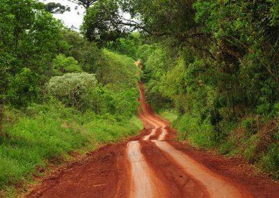 foto de paisajes de misiones argentina