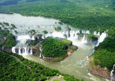 selva misionera misiones argentina
